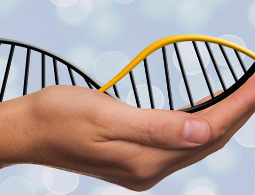 Migliori Marche Test DNA
